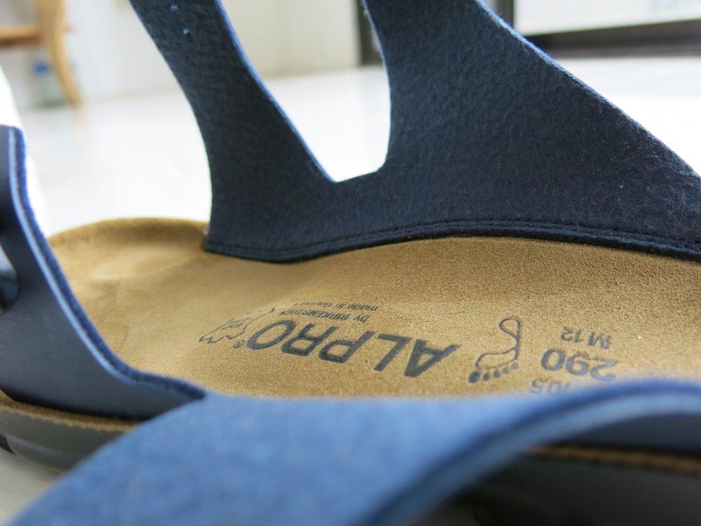 Birkenstock Alpro P250 Men S Sandals Pinoy Guy Guide