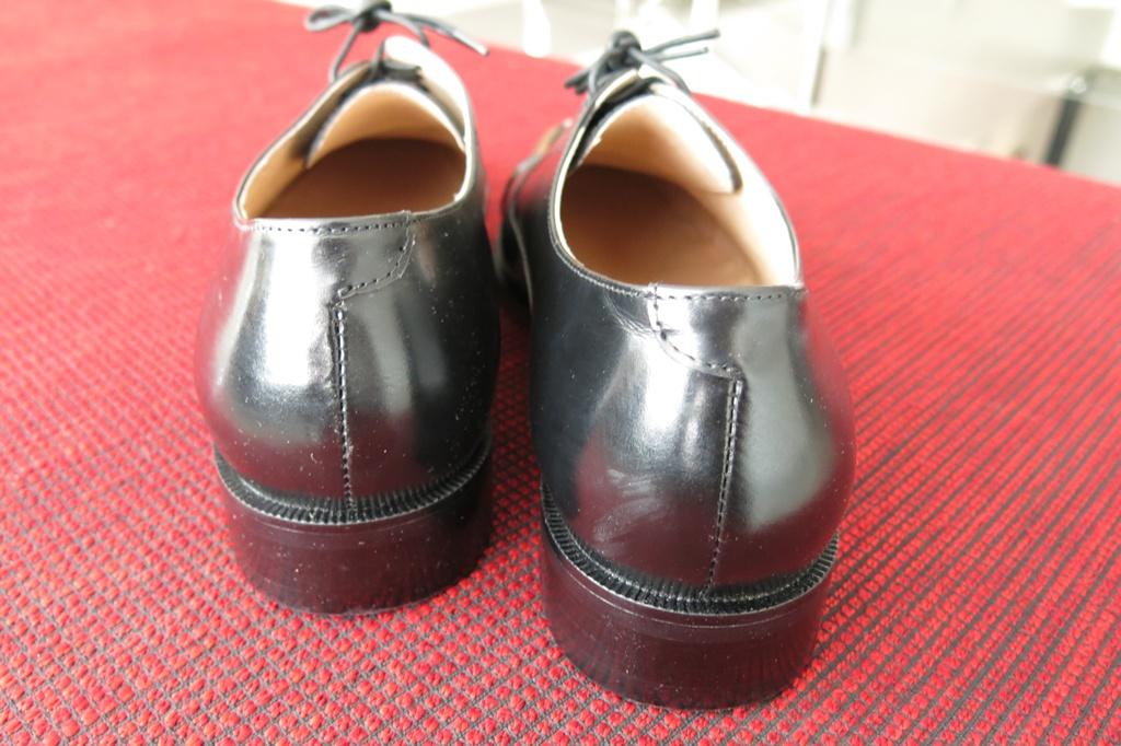 Bristol Xavier Men's Leather Shoes (10)
