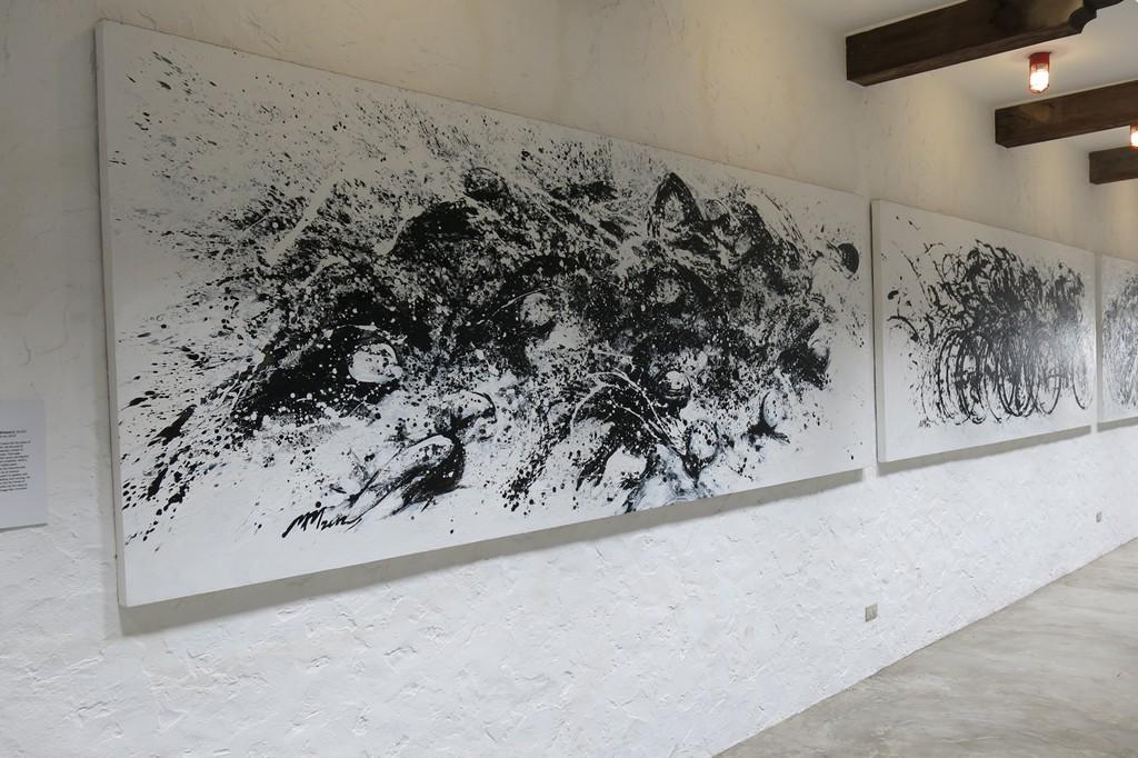 Pinto Art Museum (96)