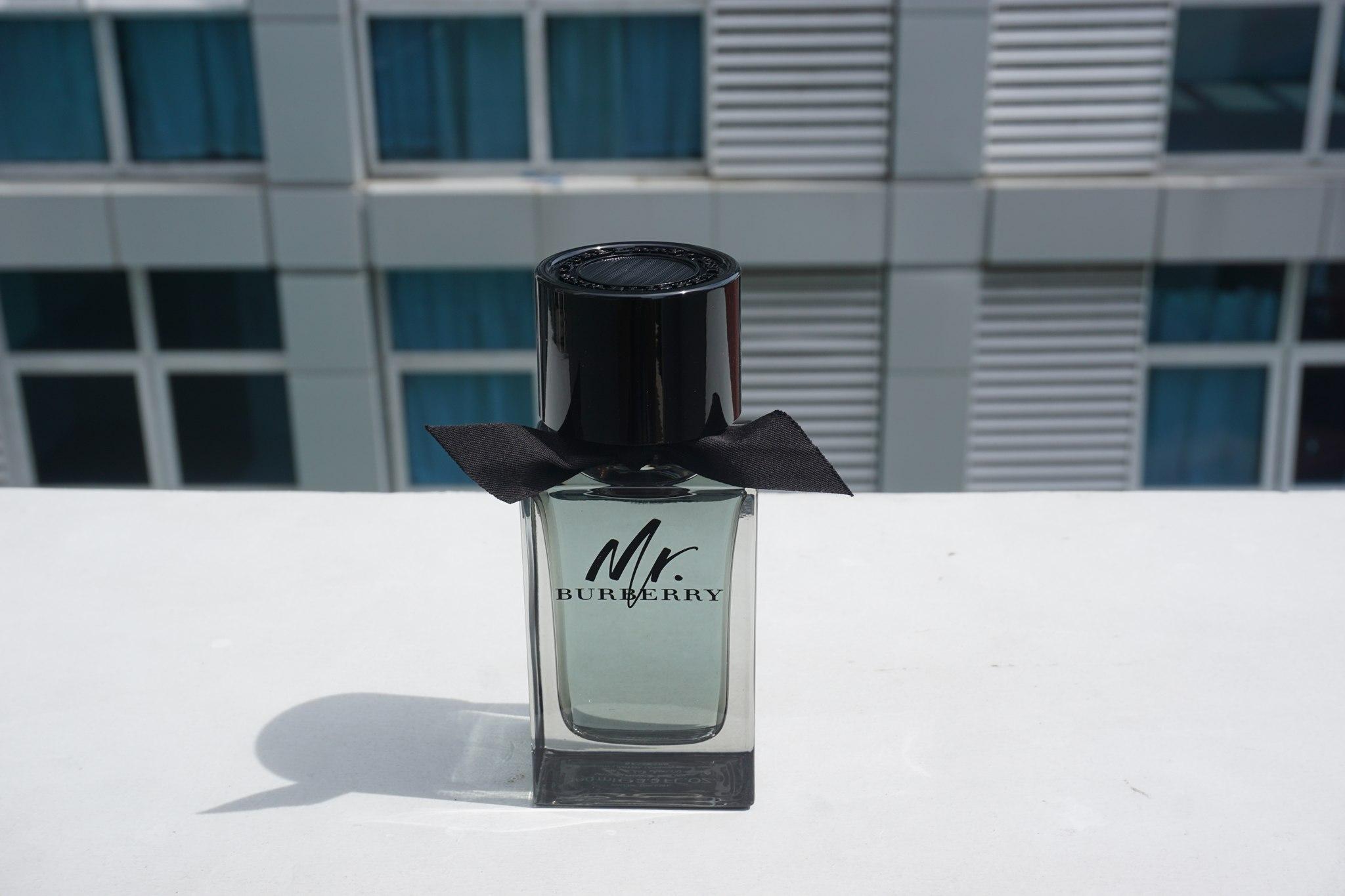 Mr. Burberry Fragrance for Men (20)
